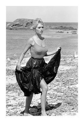 Brigitte Bardot Au Revoir Et A Jamais Agoravox Le Media Citoyen
