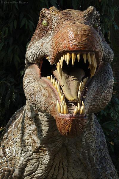 c-14 datant des dinosaures rencontres Sims pour le début